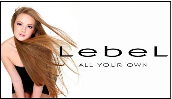 Lebel5