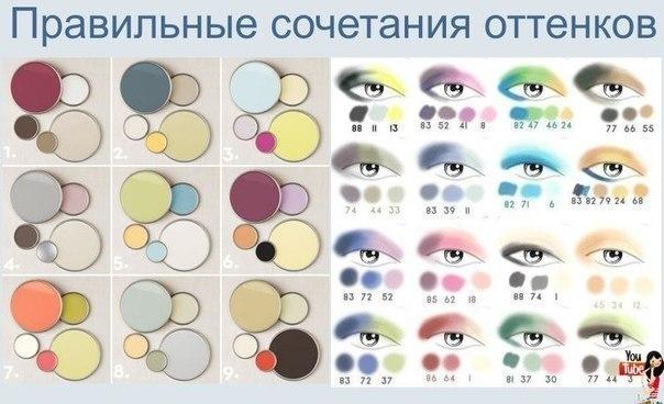 правильное сочетание цветов теней